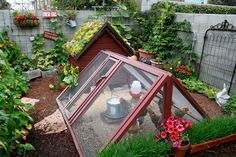 gorgeous micro-urban homestead belongs to Theresa Loe, producer for the gardening show, Growing a Greener World TV. She crams so much life into her small, urban Los Angeles yard. Backyard Farming, Chickens Backyard, Backyard Ideas, Chicken Garden, Chicken Coops, Hen Chicken, Small Chicken, Urban Chickens, Urban Homesteading
