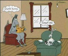 the far side cartoons in color Far Side Cartoons, Far Side Comics, Funny Cartoons, Funny Comics, Cartoon Jokes, Gary Larson Cartoons, Gary Larson Comics, Haha Funny, Funny Jokes
