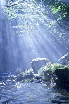 Rays of light ~ 木漏れ日 by (Yusuke Hirashima) Beautiful World, Beautiful Places, Beautiful Pictures, Beautiful Images Of Nature, Beautiful Scenery, Mother Earth, Mother Nature, Jolie Photo, Amazing Nature