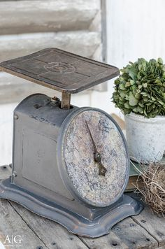 62 best weighing in on scale love images potting sheds libra rh pinterest com