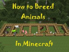 Do You Have An Animal Farm In #Minecraft? Learn How To #breed Different  Types Of Animals In Minecraft, The Resources That Each Provide And How To  Tame And ...