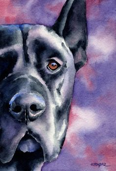 BLACK GREAT DANE Dog Art Print Signed by Artist D by k9artgallery   WATERCOLOR