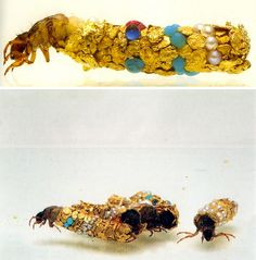 Trichoptera (caddis larva) building case (studio view), 1980-2000. Material: Gold, pearls, turquoise. Length: 2.5 cm. Photographer: Frédéric Delpech. Image courtesy of the artist and Art:Concept gallery, Paris and MONA Museum of Old and New Art.   Right now, in almost every river in the world,