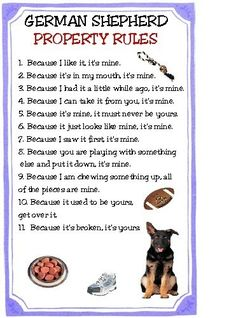 German Shepherd Property Rules Magnet VERY FUNNY by tedwards52. $4.79, via Etsy.