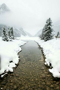 Lake Louise, Alberta in winter I Love Winter, Winter Snow, Winter Photography, Nature Photography, Winter Schnee, Beautiful World, Beautiful Places, Winter Magic, Winter Beauty