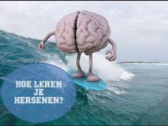 Hoe leren je hersenen? - YouTube