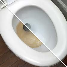 Toilet Bowl Stains phosphoric acid and in the right concentration should do quite well. Phosphoric acid is the chemical that is commonly found in bathroom cleaners because it will help dissolve hard water
