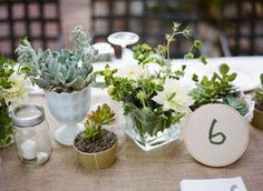 The mix of succulents and flowers.  possible easy table numbers also?