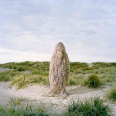 The Ghillies by Polixeni Papapetrou » Design You Trust. Design, Culture & Society.
