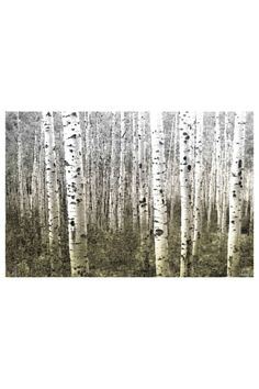 Aspen Highlands Canvas Wall Art by Parvez Taj Art on @HauteLook