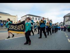 Liskeard Furry Dance 2013