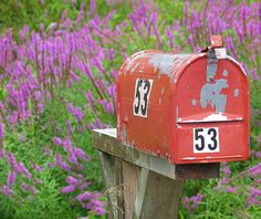 love this old mailbox