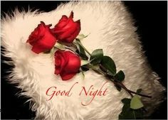 Awesome and romantic good night gif for your boyfriend and girlfriend.send good night wishes to your boyfriend or girlfriend with this beautiful gifs to impress her or him. Romantic Good Night Messages, Good Night Love Images, Good Night Gif, Good Morning Photos, Good Night Image, Good Night Quotes, Good Night In Hindi, Night Video, Morning Quotes