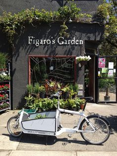 Cargo bike and flower shop Cargo bike at the flower shop, Vancouver, British Columbia, Canada Garden Cafe, Garden Shop, Flower Shop Decor, Flower Shop Interiors, Flower Truck, Decoration Plante, Cargo Bike, Flower Market, Flower Shops