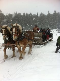 North Bay, Ontario in winter -- alpine & cross-country skiing, snow-boarding, snowmobiling, ice-fishing, ice-skating, hockey, ringuette and sleigh rides