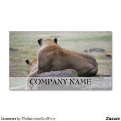 Lionesses Double-Sided Standard Business Cards (Pack Of 100)