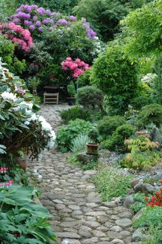 I love paths in the garden.  They can be hard or soft as long as it leads to beauty.