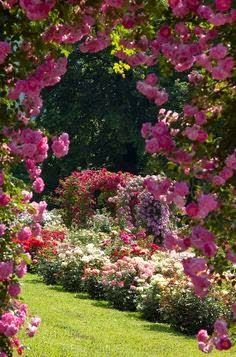 Landscaping 101 different types of plants walkways televisions amazing archway framing a beautiful flower garden mightylinksfo