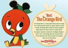 Happy Little Orange Bird Lands on New Merchandise at Walt Disney . Orange Things a orange bird Disney Nerd, Disney Love, Disney Parks, Disney Stuff, Disney World Resorts, Walt Disney World, Orange Bird, Orange Orange, Florida Oranges