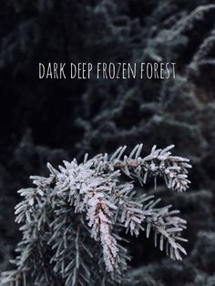 Dark deep frozen for