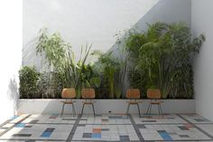 Casa Fayette, Guadalajara #modern #planterbox