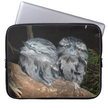 Tawny_Sleepy_Frogmouth_Owls,_15inch_Laptop_Sleeve Computer Sleeves