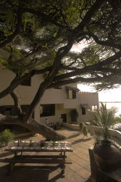 from Lamu Island
