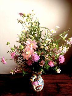 July meadow flowers