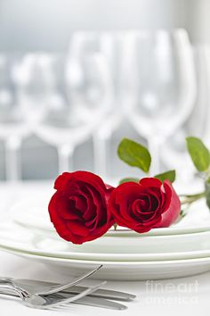 Romance Package - includes one night stay - King room - Dinner for two @ Carabbas includes one appetizer to share - two dinner entree's, two glasses of wine or soda and dessert to share  - Must be booked 24 hours in advance.  $99.99 - Not valid during holidays or special events...