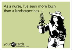 As a nurse, I've seen more bush than a landscaper has.