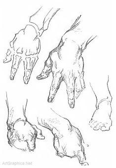 george bridgman, anatomy and art