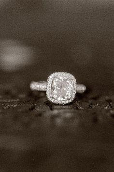Idée et inspiration Bague Diamant :   Image   Description   Michael  Anna Costa Photography