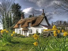Thatched roof cottage!