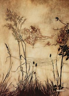 "Arthur Rackham - ""The Fairy´s Tightrope"" from ""Peter Pan in Kensington Gardens"" by J M Barrie (19006)"