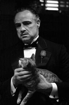 The Godfather Marlon Brando by eve