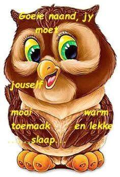 Owl Cartoon, Cartoon Pics, Cute Cartoon, Owl Clip Art, Owl Art, Baby Animals, Cute Animals, Owl Pictures, Beautiful Owl
