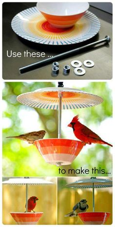 DIY bird feeder Father's Day project