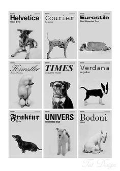 doggy type