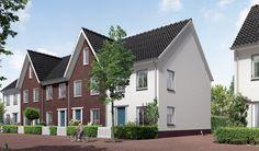 project De Groene Habitat | Amsterdam-Noord | Blauwhoed | AM | 2013