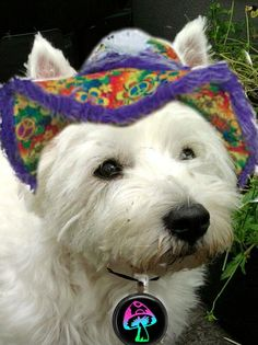 Bonnie in her Spring Hat