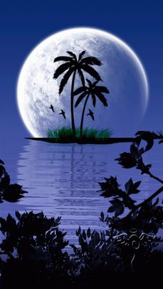 Nature is All Around Beautiful Nature Pictures, Beautiful Nature Wallpaper, Beautiful Moon, Amazing Nature, Beautiful Landscapes, Amazing Art, Blue Moon Tattoo, Ocean At Night, Planets Wallpaper