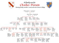Darwin Family Tree, illustrated by P. Price
