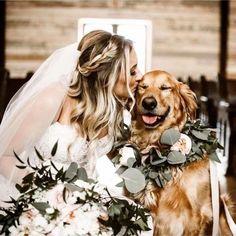 Dog Wedding, Wedding Pics, Wedding Guest Book, Wedding Bells, Dream Wedding, Wedding Day, Wedding Dresses, Church Wedding, Wedding Venues