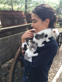 The beginning of Crazy Cat Lady