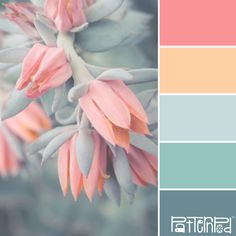 This is a perfect combination of warm shade of coral-red and cold shade of turquoise. These colours balance each other, giving the palette neutral warmth. Colour Pallette, Color Palate, Color Combinations, Spring Color Palette, Pastel Colour Palette, Coral Color Palettes, Vintage Colour Palette, Nature Color Palette, Blue Palette