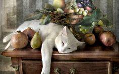 Los gatos duermen por doquier,en las mesas,en las sillas,sobre el piano,la ventana,en el medio,en la orilla,cajón abierto,zapato vacío. (Gatos-Eleanor Farjeon)