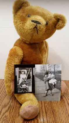 Early Antique Teddy Bear with Provenance in Dolls & Bears   eBay