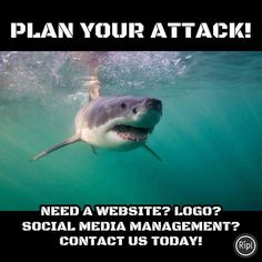 Plan your attack! Need a website? Logo? Social Media Management?  Contact us at 609-675-0912 or www.ocdesignsonline.com/request-quote.html . . . . . #shark #animals #plan #webdesign #websitedesign #webpage #business #marketing #technology #socialmedia #management #design #art #startingabusiness #online #easy #newjersey #jewelery #ebay #ecommerce #amazon #fall #bigcommerce #ecommerce #shopping #wordpress #goodbusiness #startabusiness #businessowner #shopsmall #entrepreneur