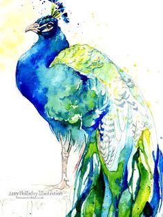 Amy Holliday Illustration : Peacock Wallpaper - for Desktop, iPad & iPhone/iPod