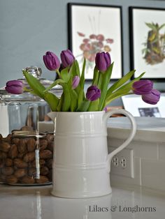 purple tulips in a white pitcher